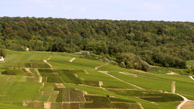 00-valle-de-la-marne-crdit-photo-crtca.jpg